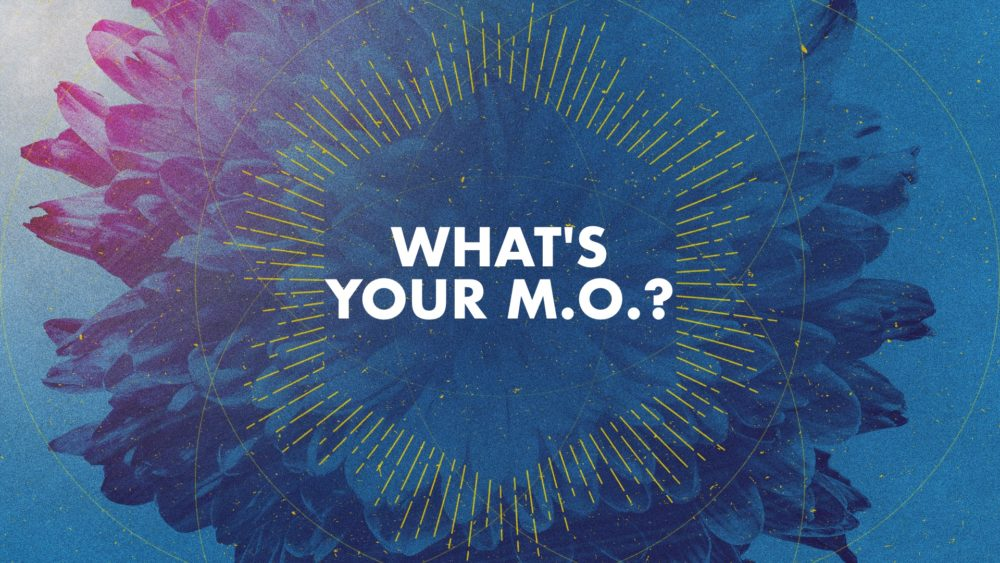 What's Your M.O.? Image