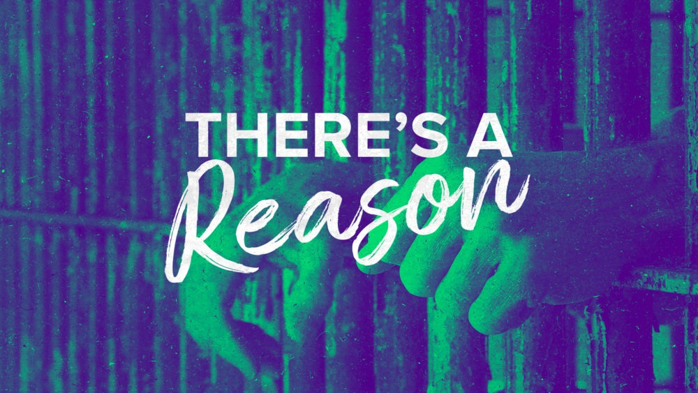 There\'s a Reason Image