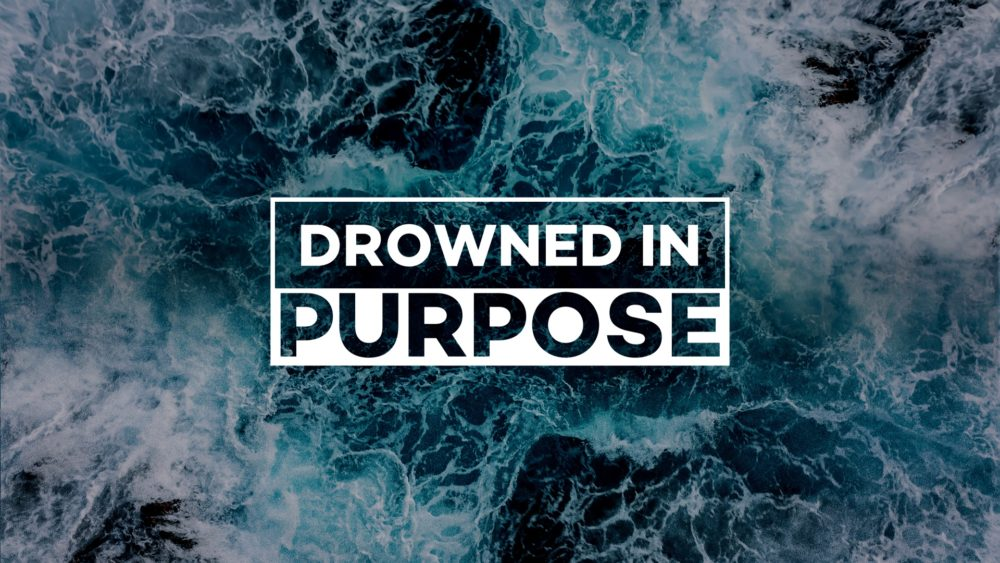 Drowned in Purpose
