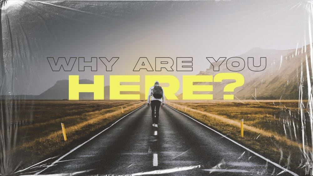 Why Are You Here? Image