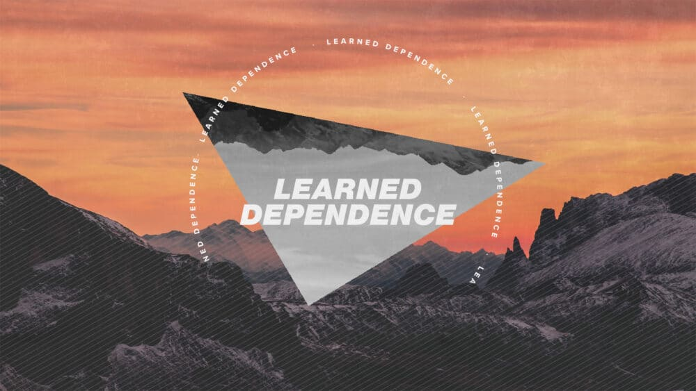 Learned Dependence Image